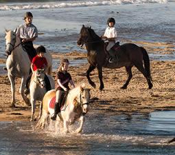 Randonnées à cheval sur l'ile Dernish