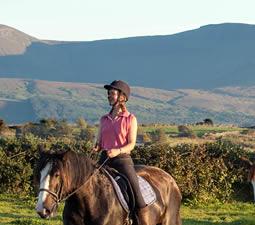 Randonnées à cheval dans la Horseshoe vallée