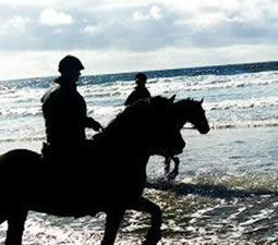 Randonnées à cheval sur la plage de Streedagh avec Island View Riding Stables