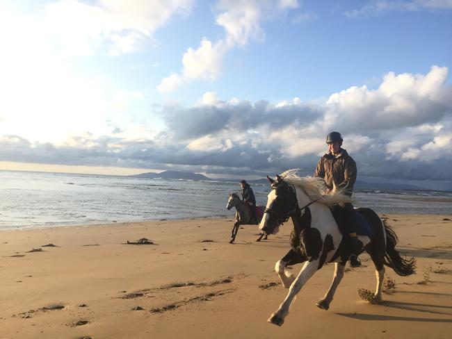 Monter A Cheval - Super galop sur la plage, balade de 1h30