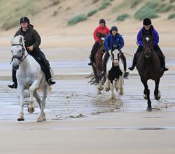 Randonnée à cheval de 3h à Island View Riding Stable