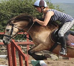cours d'équitation saut d'obstacle