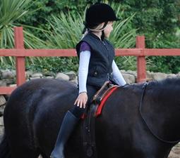 cours d'équitation en groupe